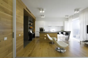 za_bor_dubrovka_apartment_03